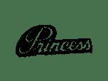 Tous les modèles du constructeur Princess