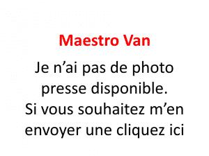 Rover Maestro Van 1989-1994